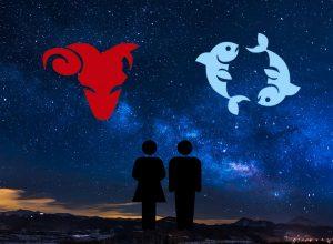 partnerský horoskop muž ryba žena beran