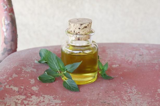 olej z máty peprné