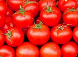 rajčata recepty